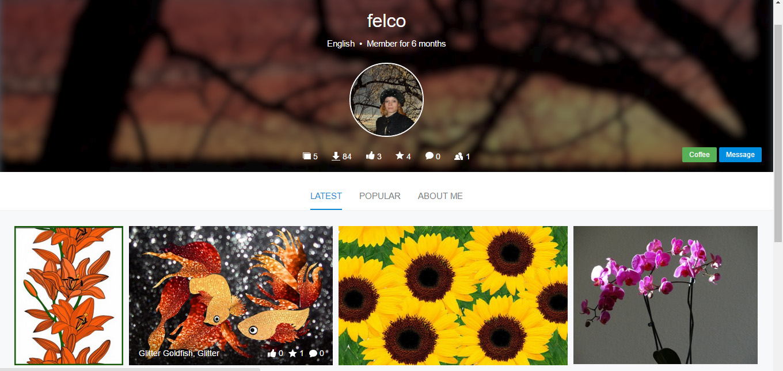 pixabay profile felco marketing
