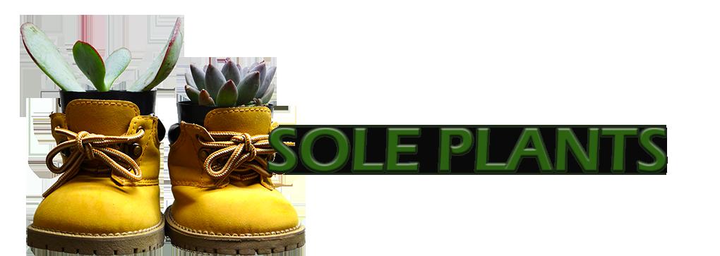 solegardens.com